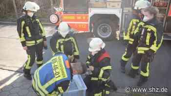Tierischer Feuerwehr-Einsatz: Zwei Dohlen aus Kaminrohr eines Mittelreihenhauses in Glinde gerettet   shz.de - shz.de