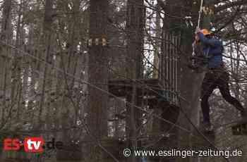 ES-TV: Im Kletterwald Plochingen - Plochingen - esslinger-zeitung.de