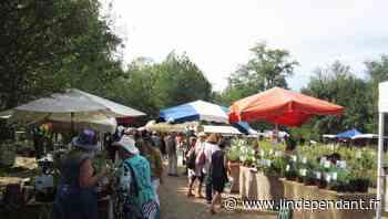 Aude - Limoux : la Région finance l'Épicerie paysanne ambulante et solidaire - L'Indépendant
