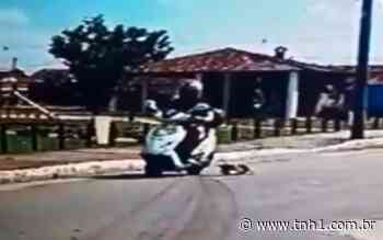 Vídeos: mulher em moto arrasta filhote de cachorro pelas ruas de Satuba - TNH1