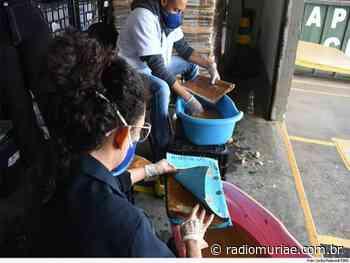 Carangola: processos judiciais e administrativos, atingidos pela chuva na cidade, são recuperados pelo TJMG - Rádio Muriaé