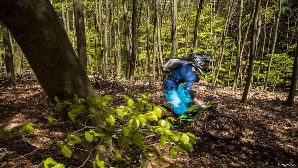 Illegale Rennstrecken in den Taunus-Wäldern - Frankfurter Rundschau