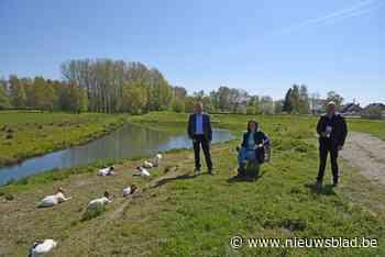 """Drie gemeenten promoten samen wachtbekken Heistergem: """"Een van de mooiste natuurgebieden van de streek"""" <BR />"""