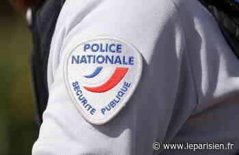 Combs-la-Ville : trois policiers blessés par deux hommes verbalisés pour violation du couvre-feu - Le Parisien