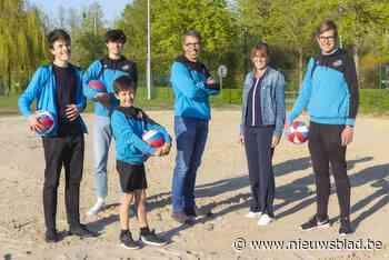 Steven en Hilde geven vier zonen de volleybalmicrobe door