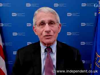 Dr Fauci says rich countries have failed India by focusing on themselves during Covid