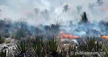 Controlado, el incendio en San Bartolo - Pulso Diario de San Luis