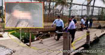 Localizan cuerpo que flotaba en el río, en Pueblo Viejo - Vanguardia de Veracruz