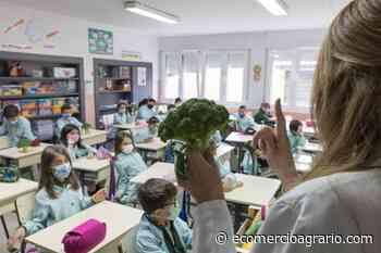 La Pandi de Sakata enseña a los niños alimentación saludable - EcomercioAgrario