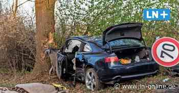 Polizei Stormarn: Mann und Hund sterben bei Unfall in Tangstedt - Lübecker Nachrichten