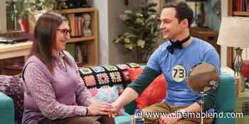 Why The Big Bang Theory's Mayim Bialik Thinks She And Jim Parsons Worked So Well Together - CinemaBlend