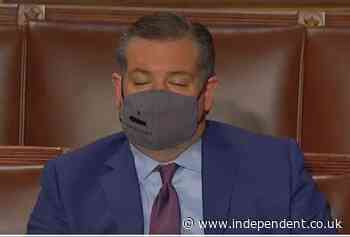 Ted Cruz busted for falling asleep during Biden's joint address