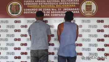 A puñaladas ya golpes matan a una joven en Maturín - El Pitazo