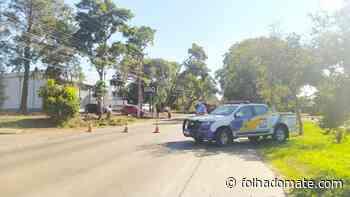 Tipuanas começam a ser retiradas no Acesso Leopoldina - Folha do Mate Notícias