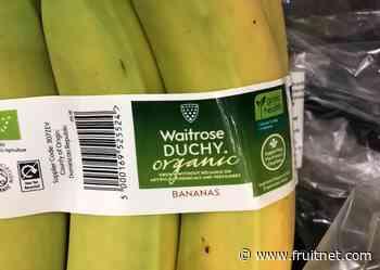 Organic sales rise at Waitrose