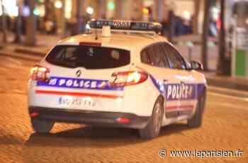 Roissy-en-Brie : policiers encerclés en pleine interpellation et pris pour cibles de tirs de mortiers - Le Parisien