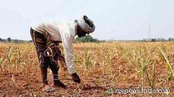 Here's How to enroll a farmer on the PM Kisan Samman Nidhi scheme
