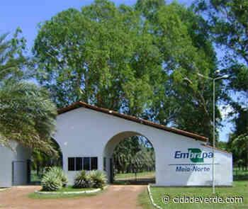 Embrapa nega fechamento de unidade em Parnaíba e confirma mudanças - Parnaiba - Cidadeverde.com