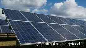 A Spresiano un parco fotovoltaico di 20 ettari targato Ordine di Malta - La Tribuna di Treviso