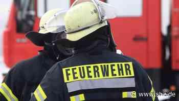 Feuer in Rellingen: Bürger helfen Feuerwehr gegen Flächenbrand bei der Brüder-Grimm-Schule | shz.de - shz.de