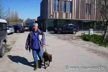 Stormloop om met honden van Gentse dierenasiel te gaan wandelen