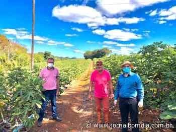 Jacutinga: fruticultura movimenta economia local - Jornal Bom Dia
