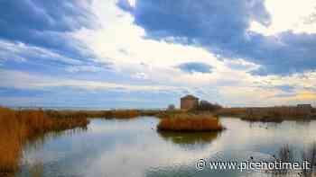 San Benedetto del Tronto, si firma il ''Contratto di zona umida'' della Sentina - picenotime