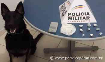 PM apreende drogas no bairro Bom Jardim - Portal Caparaó