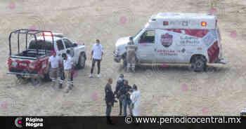 Feminicidio 28: Abandonan el cadáver degollado de una mujer en Amozoc - Periodico Central