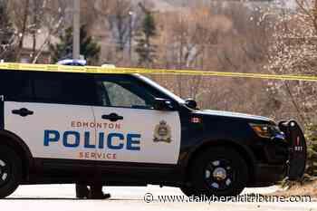 Road rage assault investigated as racially-motivated: Edmonton police - Alberta Daily Herald Tribune