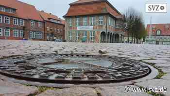Maifeiertag: In Boizenburg wird der Maibaum trotz Corona stehen   svz.de - svz.de