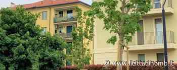 Pollice verde a Villasanta: 50 nuovi alberi e adesso il conto sale a quasi 2.900 - Il Cittadino di Monza e Brianza
