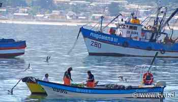 Economía y Medio Ambiente: ¿Cuál es la realidad de la Peca en Chile? - TVU