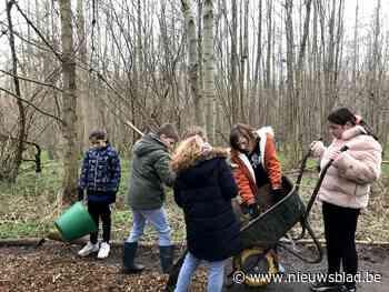 Leerlingen helpen een handje in natuurgebied Birrebeekvallei - Het Nieuwsblad