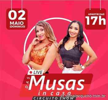 Direto de Chapadinha, Live das Musas in Casa agita o fim de semana – Jornal Pequeno - Jornal Pequeno