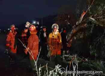 Caídas de árboles y un fallecido por lluvias en Mixquiahuala e Ixmiquilpan - La Silla Rota