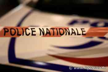 Noisiel: un mort et un blessé grave près de la cité Blanche - Le Parisien