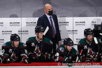 Possible Replacements for Arizona Coyotes Head Coach Rick Tocchet - Last Word on Hockey