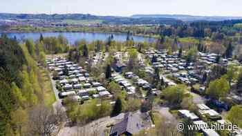 Neuer Pächter krempelt Platz um - Camper-Wut in Losheim am See - BILD