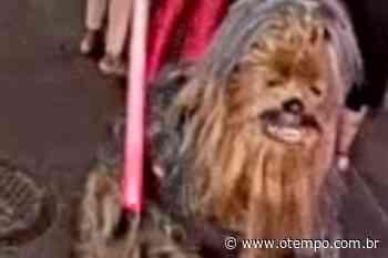 Homem vestido de 'Chewbacca' é procurado por esfaquear pessoa em New Orleans - O Tempo