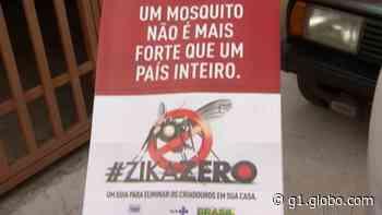 Prefeitura de Guararema reforça orientação sobre os cuidados contra a Dengue após aumento nos casos da doença - G1