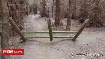 Chopwell Wood: Medieval-style torture unit found on cycle path