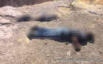 Encuentran los cuerpos de una pareja en los límites de Purísima y San Pancho - El Sol de León