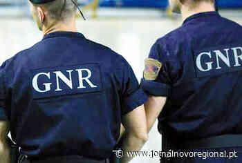 Vila Nova da Telha (Maia): Detido a roubar em garagem fica em prisão preventiva - - Jornal Novo Regional