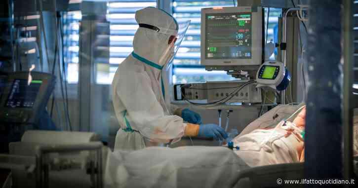 Coronavirus, i dati di oggi – 13.446 nuovi casi su 338mila test: il tasso di positività scende al 3,9%. 263 i morti. Continua il calo dei ricoveri