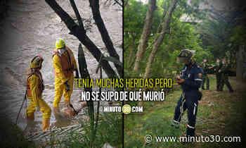 EN FOTOS Y VIDEO: Por Caribe sacaron un muerto del río Medellín - Minuto30.com