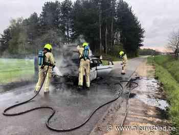 Auto gaat in vlammen op aan Papendijk