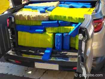 Polícia apreende 620 kg de maconha em picape alugada, em Tapejara - G1