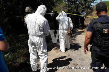 Vecinos de Las Guacamayas encuentran un cuerpo baleado en una brecha, en Lázaro Cárdenas - La Voz de Michoacán
