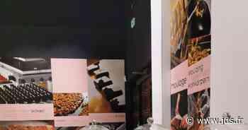 Le musée du chocolat sous un nouveau jour - Geispolsheim - Actu Magazine - Journal des spectacles